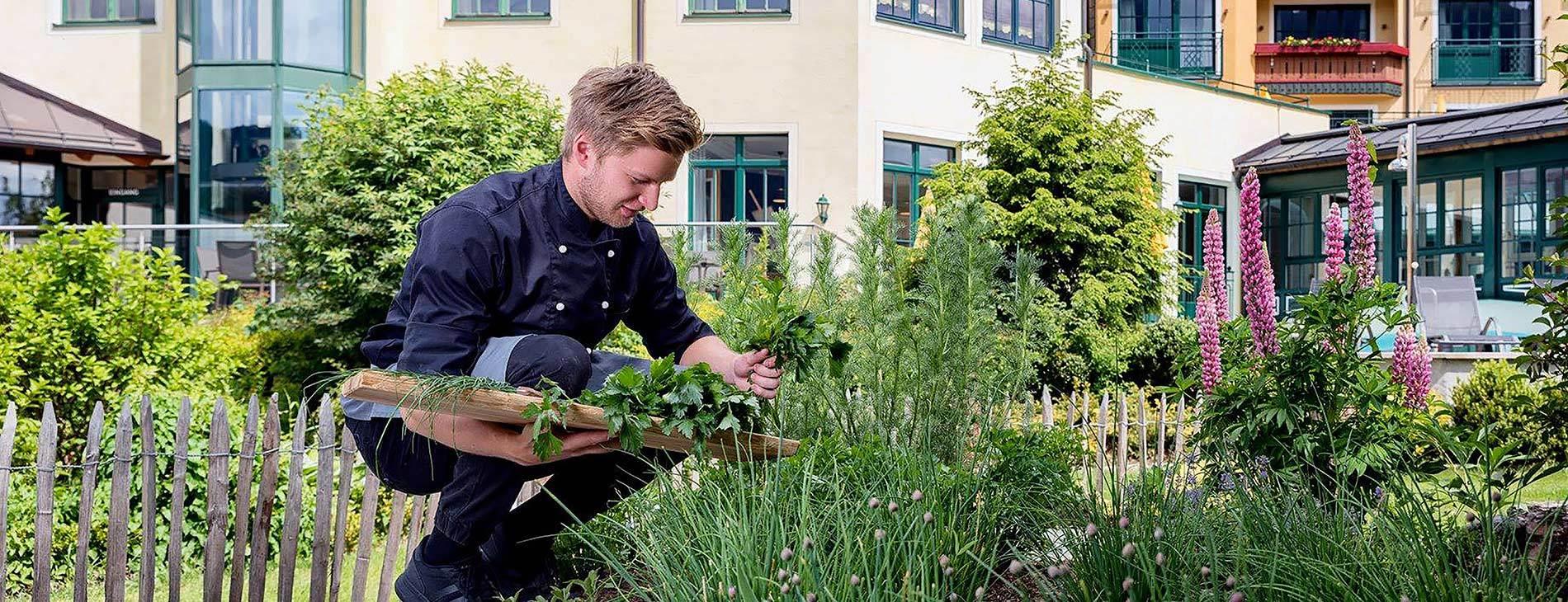 Kennen Sie unseren Kräutergarten schon?
