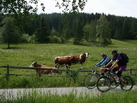 Hollerberg Route