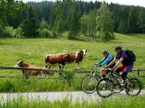 Paradies für Radfahrer